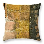 Weathered Wall Throw Pillow