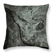 Weathered Wood 1 Throw Pillow