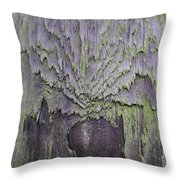 Weathered Wood And Lichen Abstract Throw Pillow