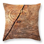 Weathered Wood On Old Tree Throw Pillow
