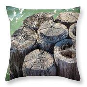 Weathered Wood Pier Posts In Lake Michigan Throw Pillow