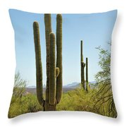 Weavers Needle Throw Pillow