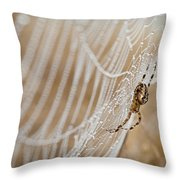 Web Administrator Throw Pillow