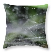 Web After Rain 2 Throw Pillow