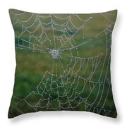 Web After The Storm Throw Pillow
