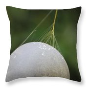 Web Anchor Throw Pillow