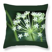Web Design - 2 Throw Pillow