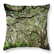 Web Of Life Throw Pillow