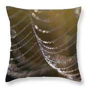 Web Sparkle Throw Pillow