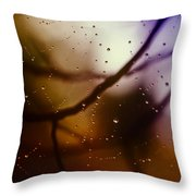 Web With Droplets Throw Pillow
