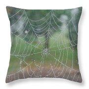 Webbed Throw Pillow