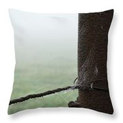 Webs And Dew Throw Pillow