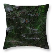 Webs Of A Tree Throw Pillow