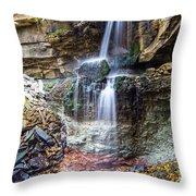 Webwood Falls Throw Pillow