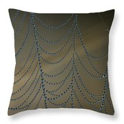 Webworks Throw Pillow