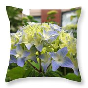 Wednesday May 18 2016 Throw Pillow