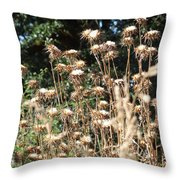 Weed. Dryed Weed. Throw Pillow
