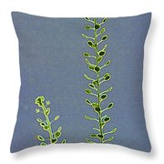 Weed Seeds Throw Pillow