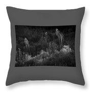 Weeds 5 Throw Pillow