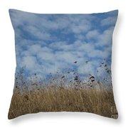 Weeds And Dappled Sky Throw Pillow