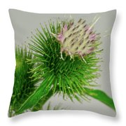 Weeds Can Be Beautiful Too Throw Pillow