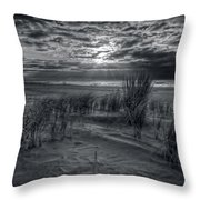 Weeds In The Sunrise Throw Pillow