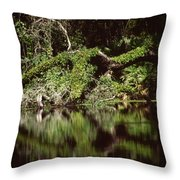 Weeki Wachee Springs Throw Pillow