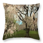 Weeping Asian Cherry Throw Pillow