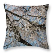 Weeping Cherry In Spring Throw Pillow