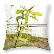Weeping Willow Close To The River Throw Pillow