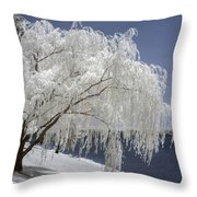 Weeping Willow In Infrared Throw Pillow