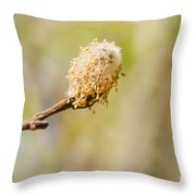 Weeping Willow Seed Throw Pillow