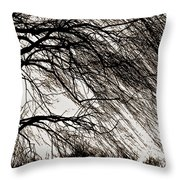 Weeping Willow Tree  Throw Pillow