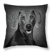 Weimaraner In Black And White Throw Pillow