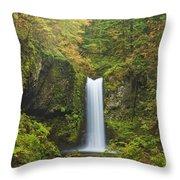 Weisendanger Falls Throw Pillow