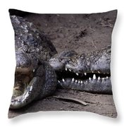 Welcome Come On In Throw Pillow