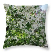 Welcome Spring 5 Throw Pillow