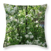 Welcome Spring 6 Throw Pillow