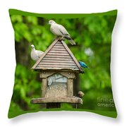 Welcome To My Bird Feeder Throw Pillow