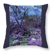 Welcome To My Dreamscape Throw Pillow
