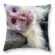 Welcome To Paradise Gardens Throw Pillow
