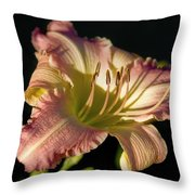 Welcome To Summer Throw Pillow