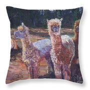 Welcoming Crowd Throw Pillow