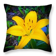 Welcoming Lily Throw Pillow