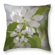 Welcoming Spring - 2  Throw Pillow
