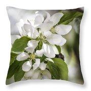 Welcoming Spring Throw Pillow