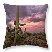 Well Armed At Dusk Throw Pillow