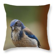 Well Hello Beautiful Throw Pillow