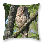 Well Hello Big Eyes Throw Pillow