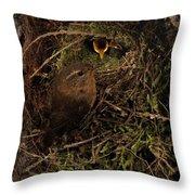 Well Hidden Nest Throw Pillow
